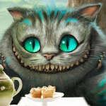 @galiya-sharipova