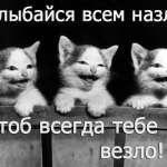@shpinyova-anyutk