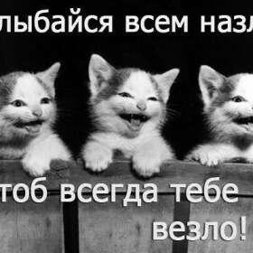 shpinyova-anyutk
