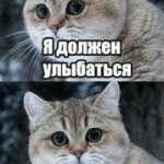 @julkaignatulka