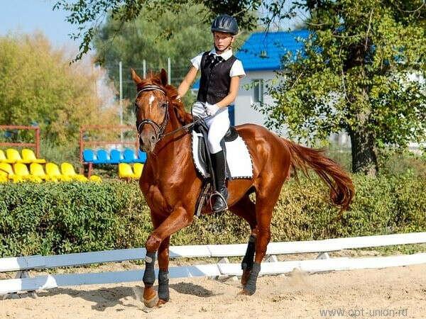 поездить на коне