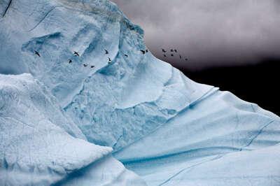 Увидеть айсберг