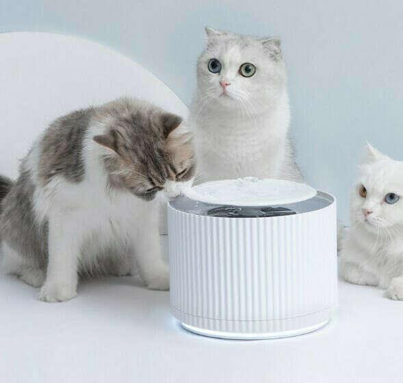 Любой удобный-красивый поилка-фонтанчик для животных (кошек), например Xiomi