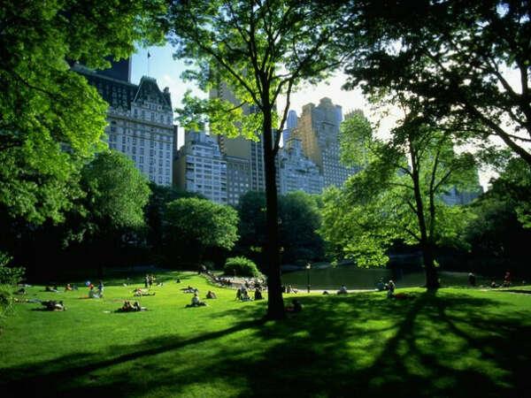 Переночевать в Центральном Парке ( New York ) на открытом воздухе! Просто на полянке ( Только летом ).