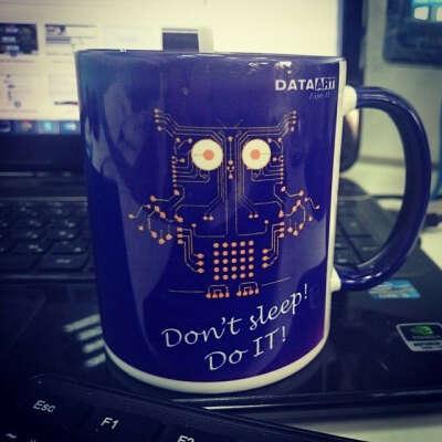 DataArt It cup