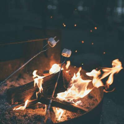 Пожарить зефир на костре