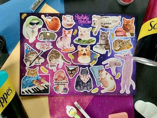 Стикеры с мемными котиками