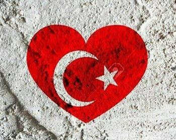 Изучить турецкий.