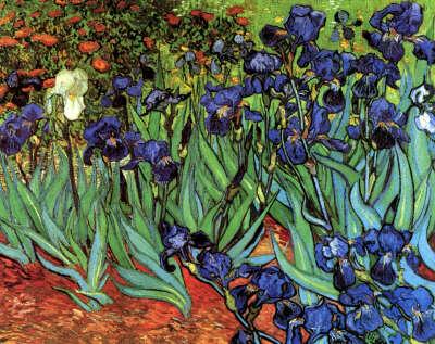На выставку картин Ван Гога