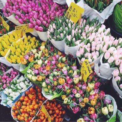 Чтобы в доме всегда стояли ароматные цветы