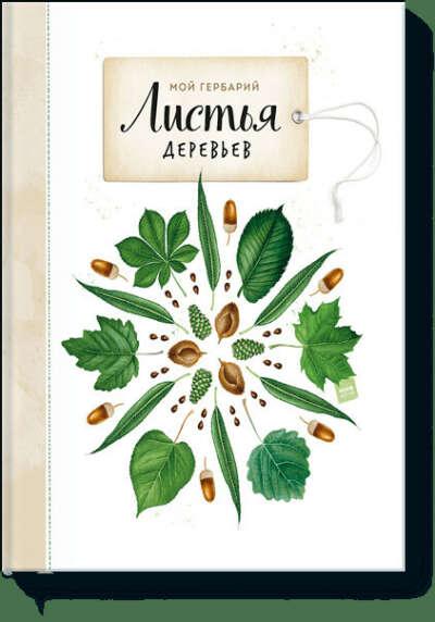Мой гербарий. Листья деревьев (Анна Васильева, Светлана Винникова) — купить в МИФе