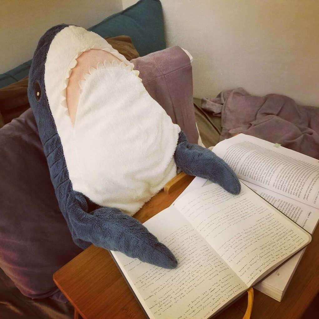Акула из ИКЕИ