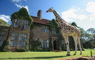 Побывать в Giraffe Manor