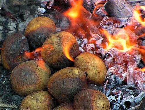 Съесть картошку, приготовленную на костре