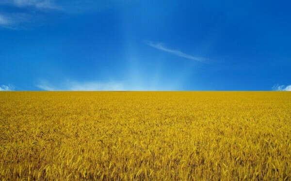 Мир в Украине