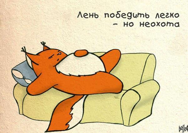 Не лениться