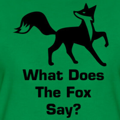 футболку What Does The Fox Say