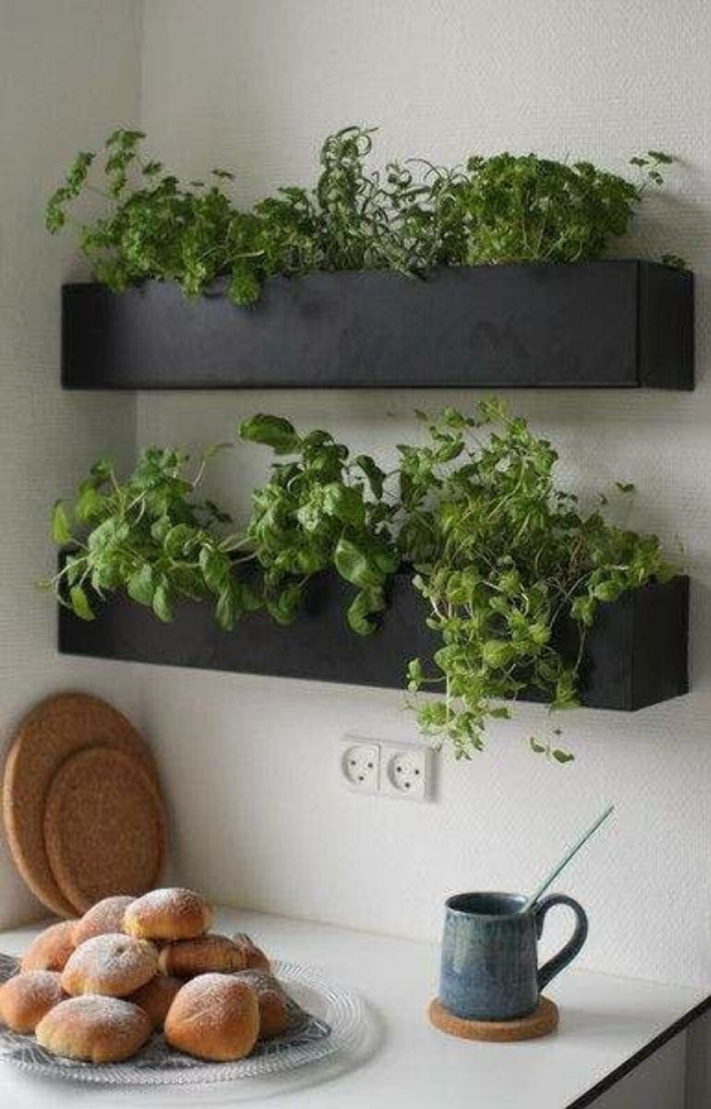 Herb garden on kitchen