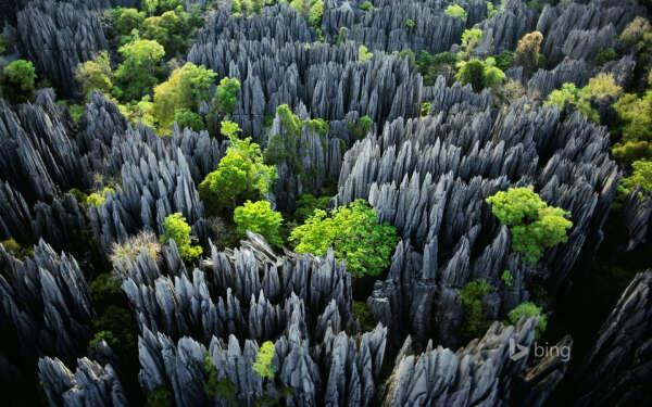 Посетить заповедник Цинги-де-Бемараха на острове Мадагаскар