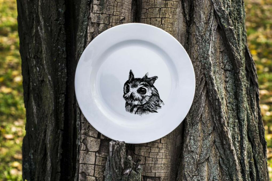 Тарелку с совой