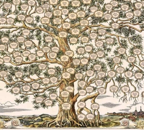 Семейное древо. Генеалогическое исследование моего рода