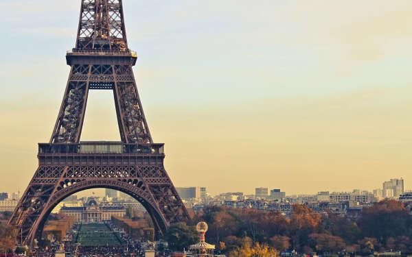 Хочу свободно владеть французским языком