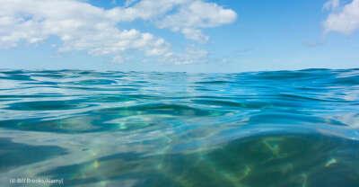 Искупаться в море в этом году