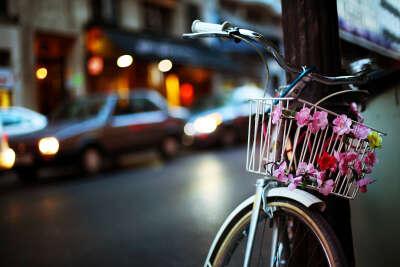 Научиться ездить на велосипеде