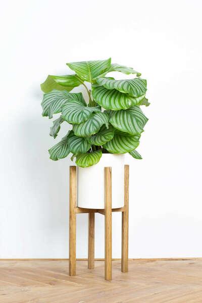 Подставка для растения (21 см)