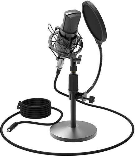 Микрофон Ritmix RDM-175 Black
