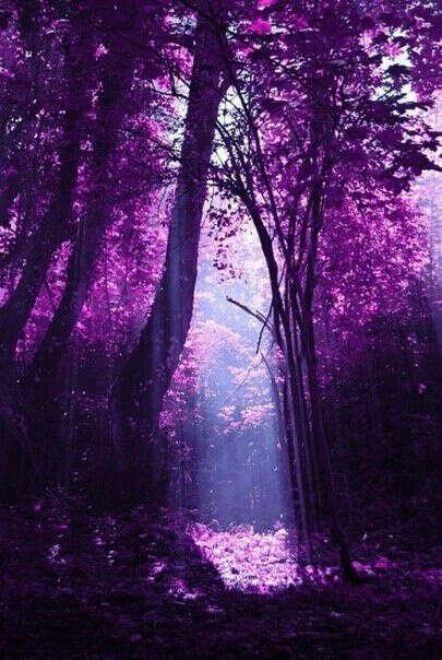 Хочу побывать в загадочных уголках планеты