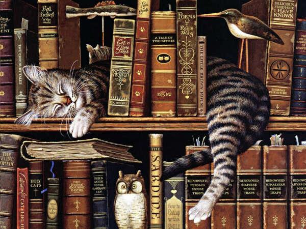 Прочитать 7 книг за лето