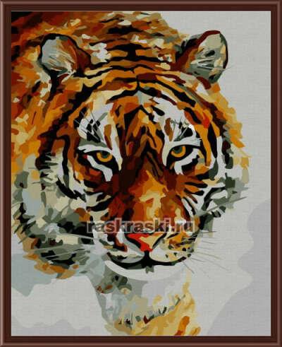 "Раскраска по номерам на холсте Color-Kit CG031 - ""Зимний тигр"" | Купить раскраски по цифрам."