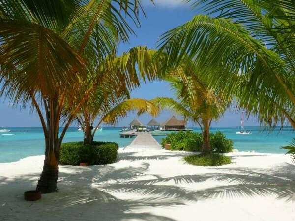 Слетать на Мальдивы
