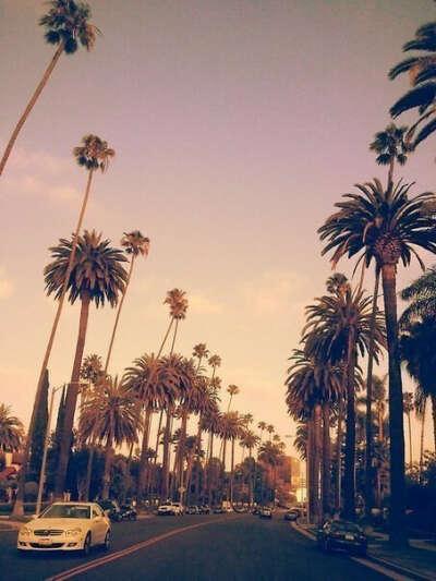 Хочу в Майами
