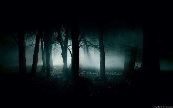 Не бояться темноты