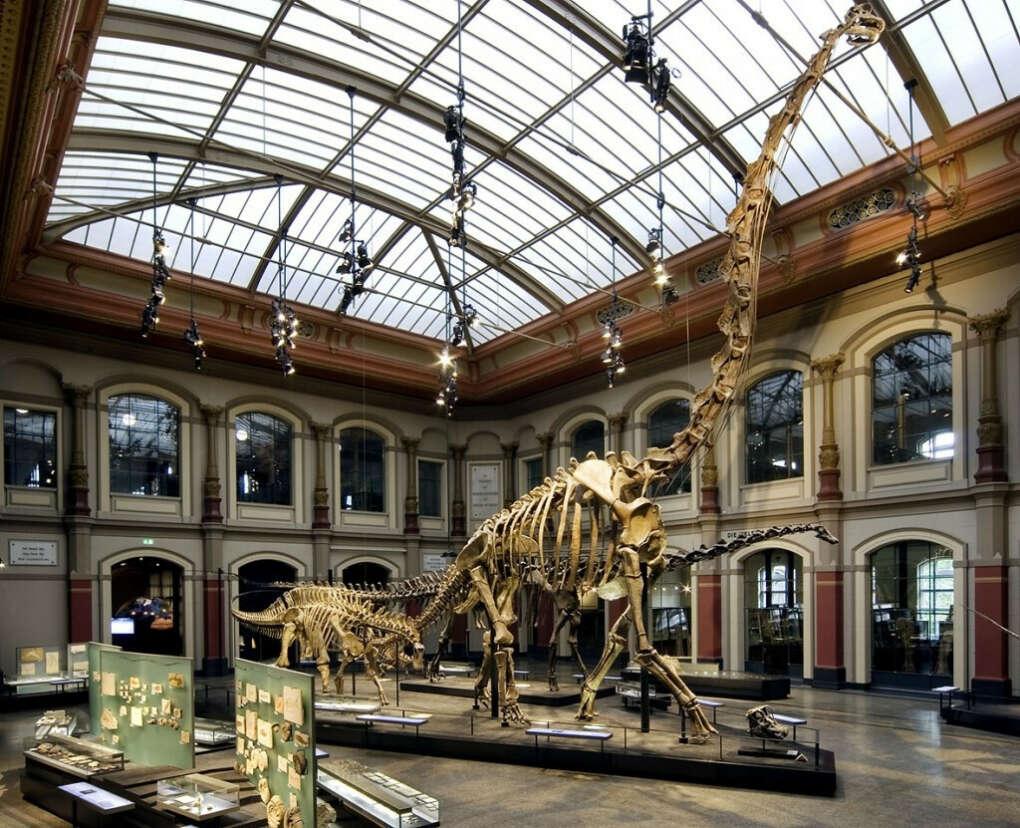 Посещение музея естествознания в Берлине