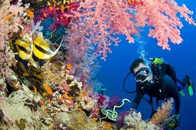 Поплавать с аквалангом в океане