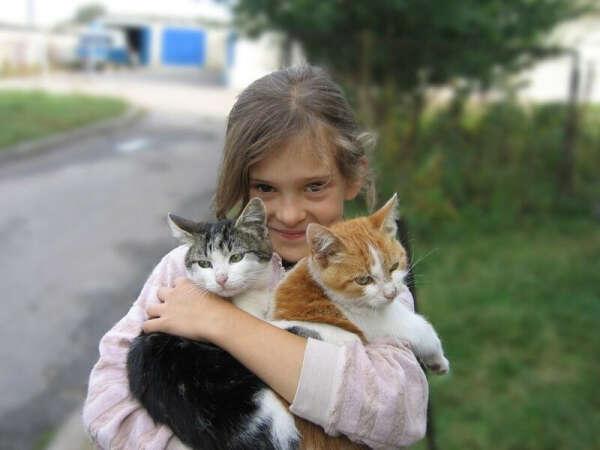 Чтобы все бездомные животные нашли хороших хозяев