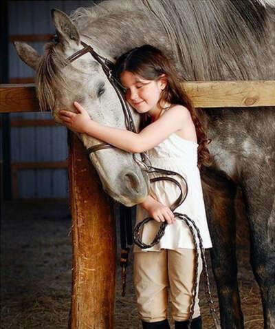 Узнать любовь лошади
