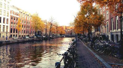 Go to Amsterdam