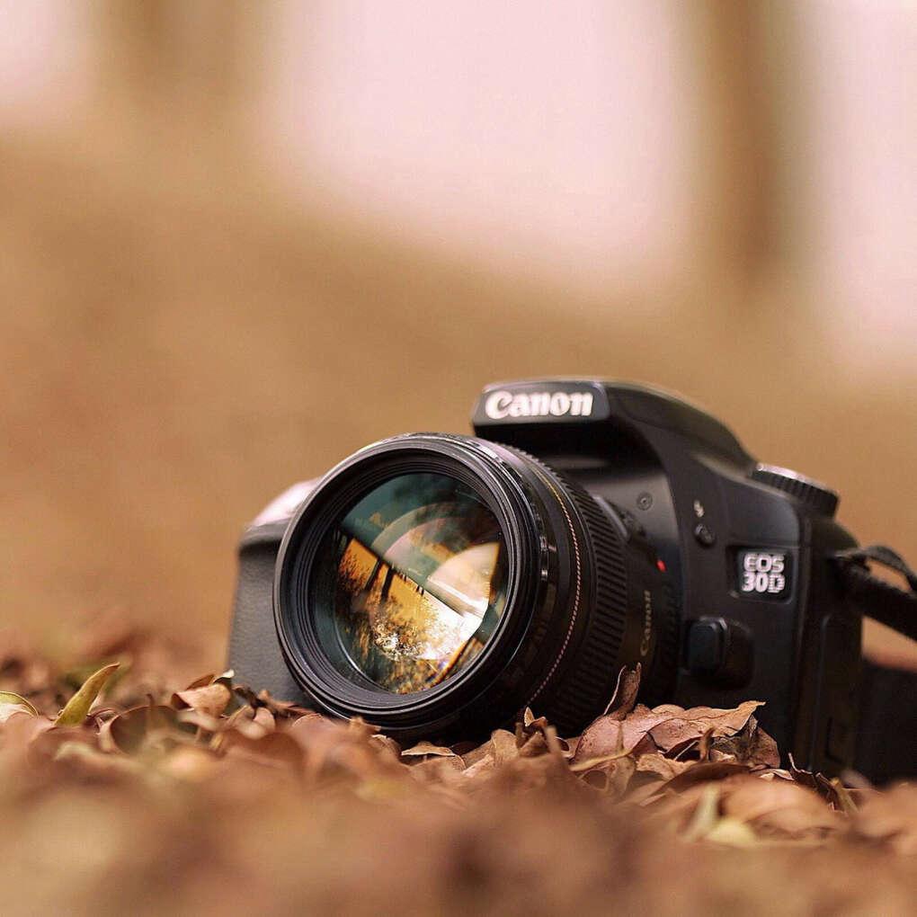 Много фотографировать и фотографироваться