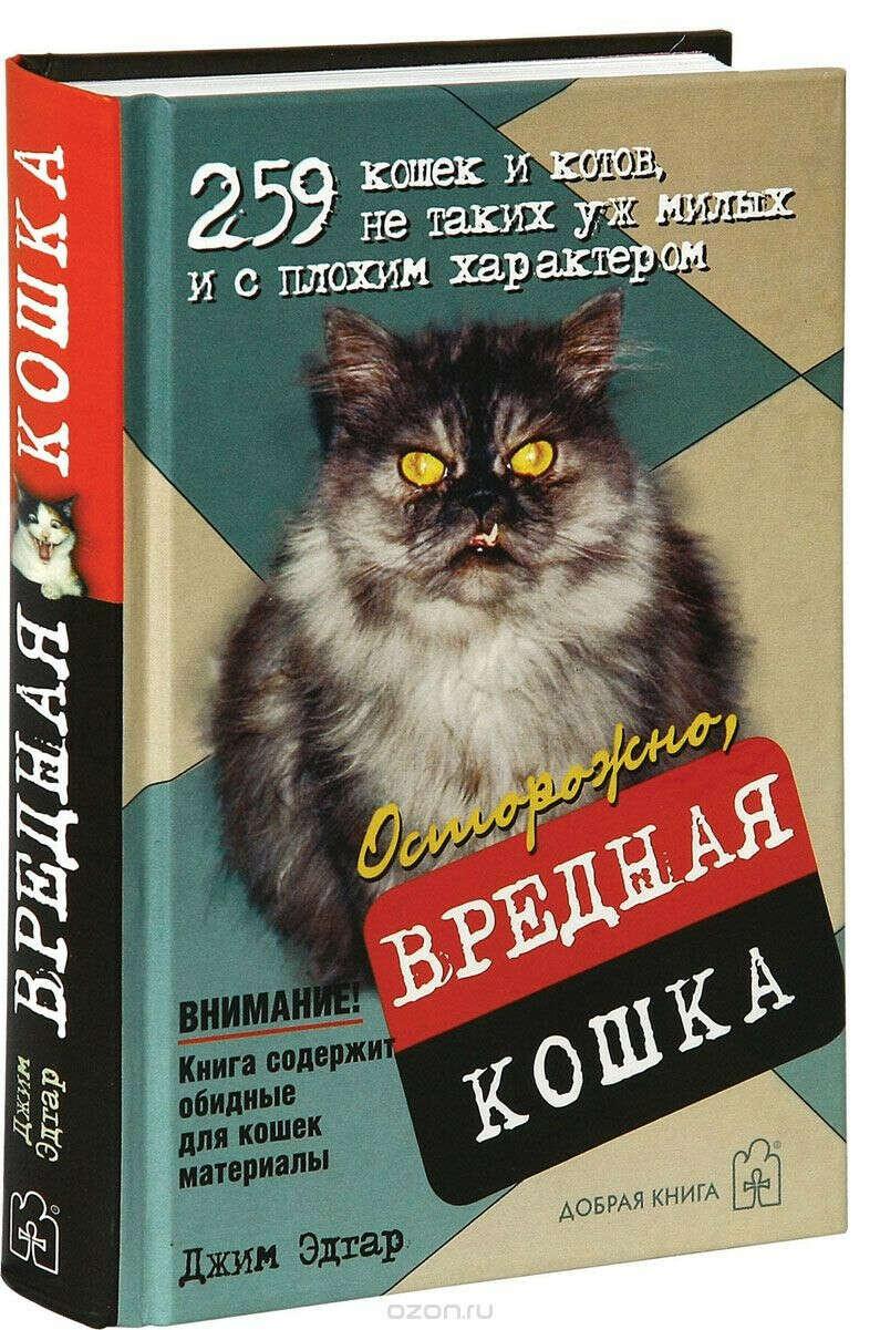 """Джим Эдгар """"Осторожно, вредная кошка"""""""
