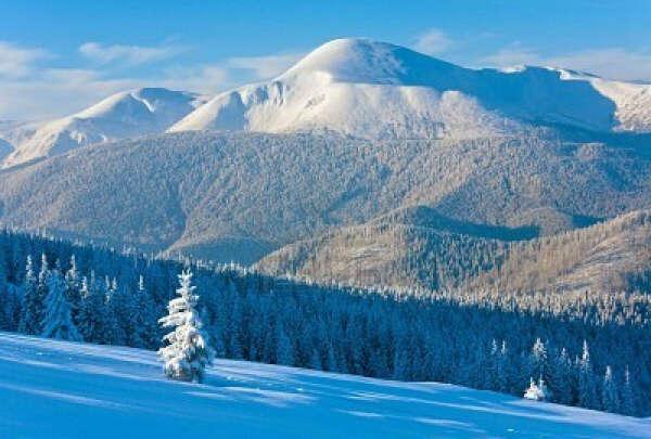 Съездить зимой в Карпаты