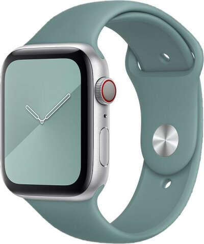Ремешок для Apple Watch, кактус
