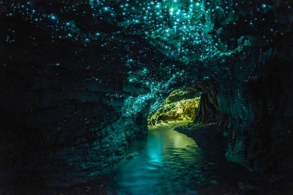 Пещеры Светлячков, Вайтомо, Новая Зеландия