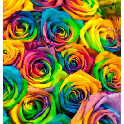 Хочу букет роз цвета радуги))))))))))