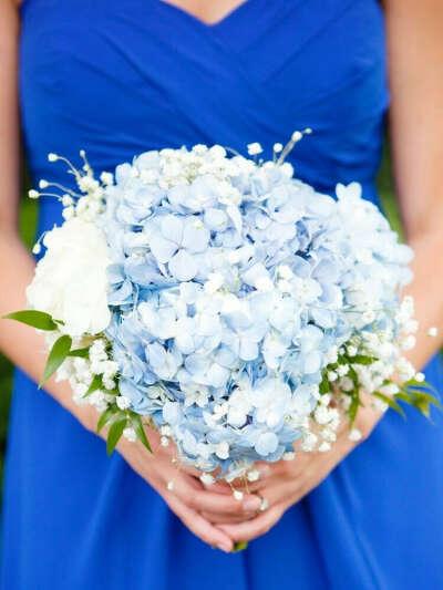Цветы (гортензии голубые/синие + ландыши)
