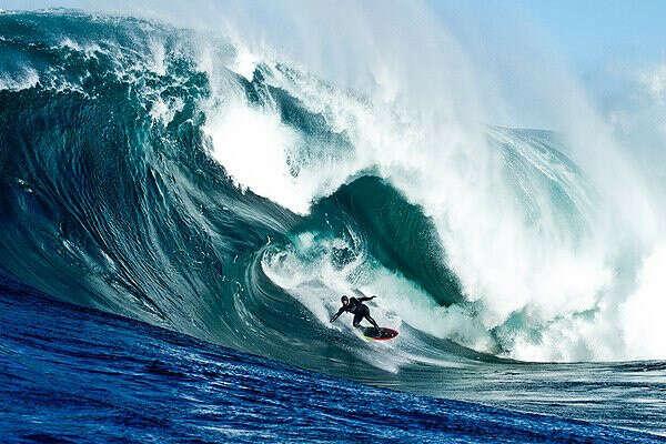 Прокатиться на волне Мэверик на серфе