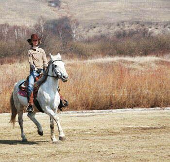 Научиться ездить на лошадях